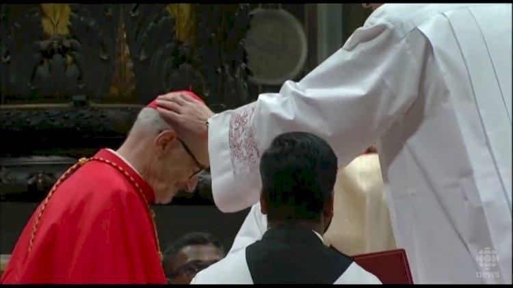 Michael Cardinal Czerny, SJ, Pemerhati Migran-Pengungsi dan Orang Terbuang